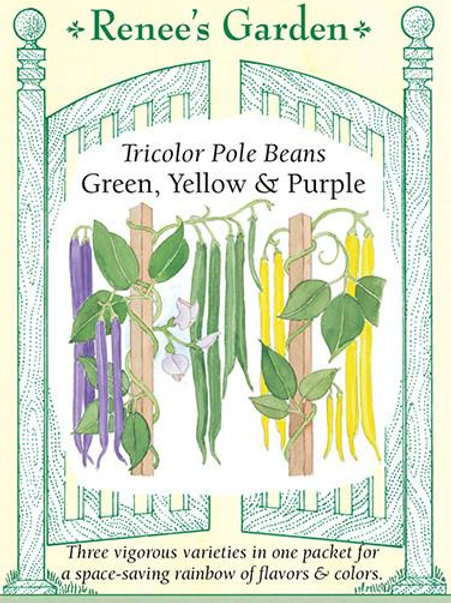 Renee's Garden Tricolor Pole Beans Green, Yellow & Purple Seed Packet
