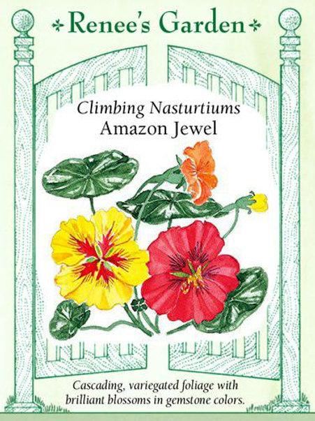 Renee's Garden Climbing Nasturtiums Amazon Jewel Seed Packet