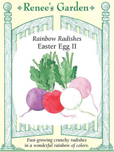Renee's Garden Rainbow Radishes Easter Egg II Seed Packet