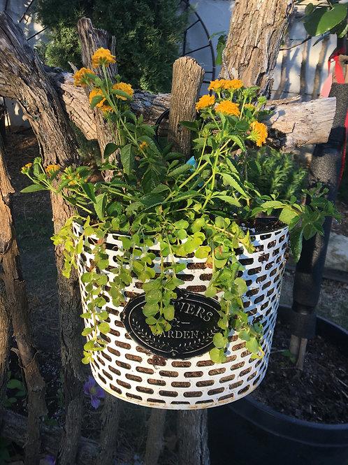 Metal White Flower Garden Hanging Baskets