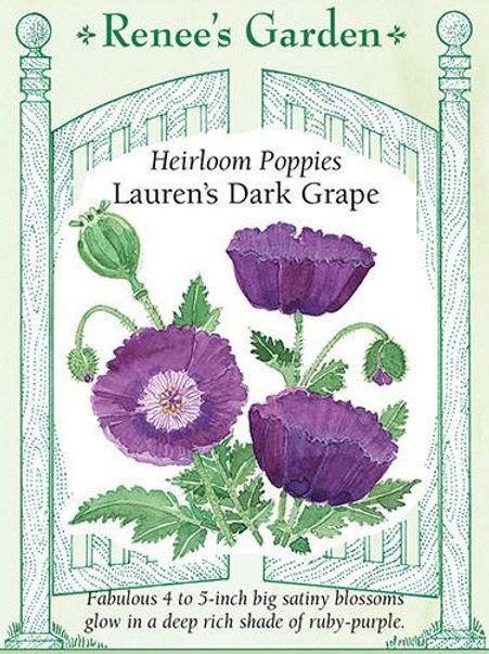 Renee's Garden Heirloom Poppies Lauren's Dark Grape Seed Packet