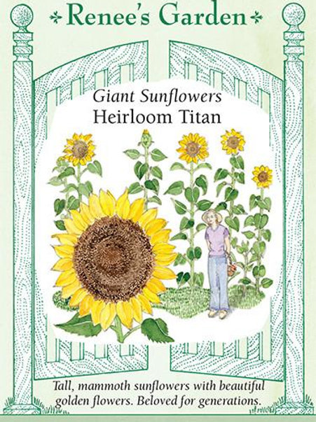 Renee's Garden Giant Sunflowers Heirloom Titan Seed Packet