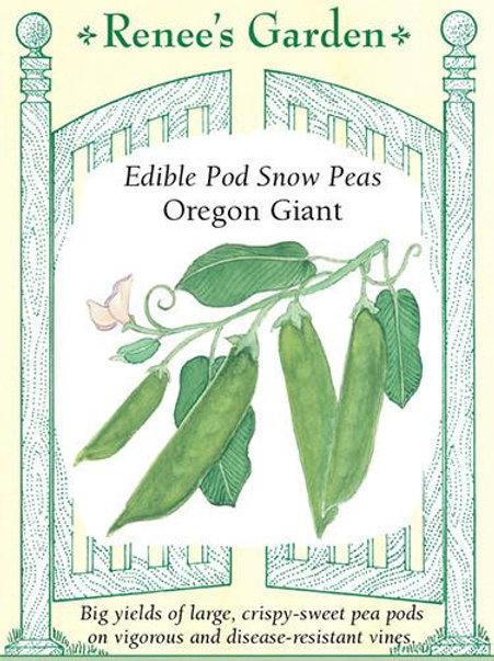 Renee's Garden Edible Pod Snow Peas Oregon Giant Seed Packet