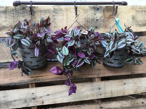 Wandering Jew Hanging Metal Trio