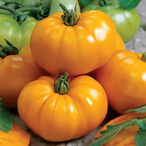 Chef's Choice Yellow Tomato