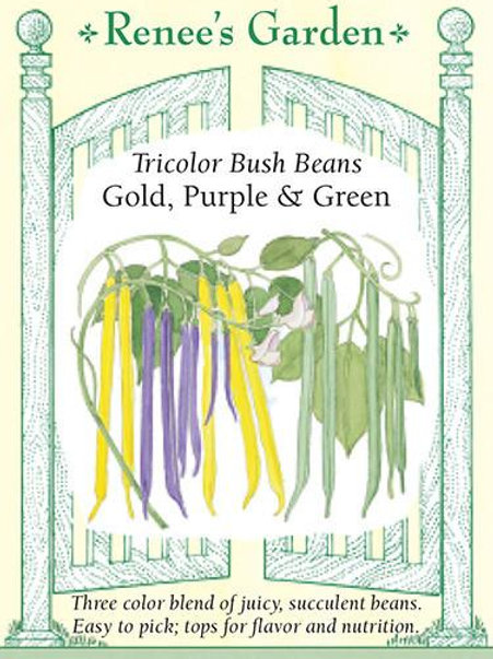 Renee's Garden Tricolor Bush Beans Gold, Purple & Green Seed Packet