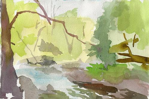 Chester Creek behind Heron Crest