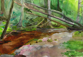 Fallen trees, Catawissa PA