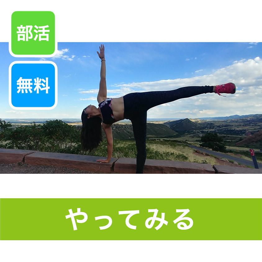 【お試し】Yoga Sensei Boston-リラックスヨガ ~自分でできる身体のメンテナンス~