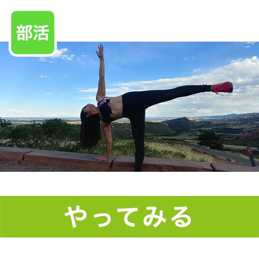Yoga Sensei Boston-リラックスヨガ ~自分でできる身体のメンテナンス~