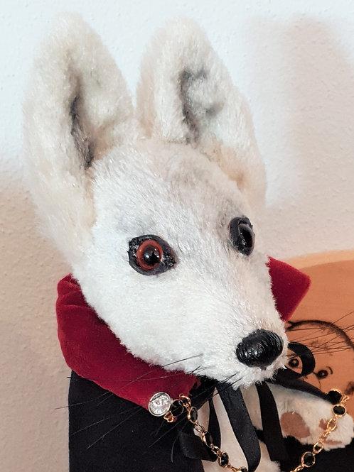 Abercrombie Arctic Fox