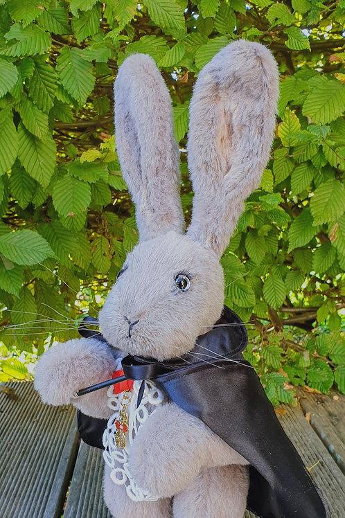 Houdini Magical Rabbit