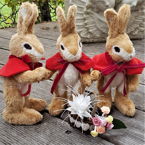 Flopsy, Mopsy & Cottontail Bunnies