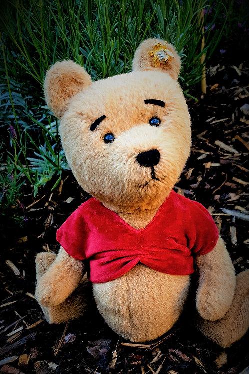 Winnie the PoohbearGruBear