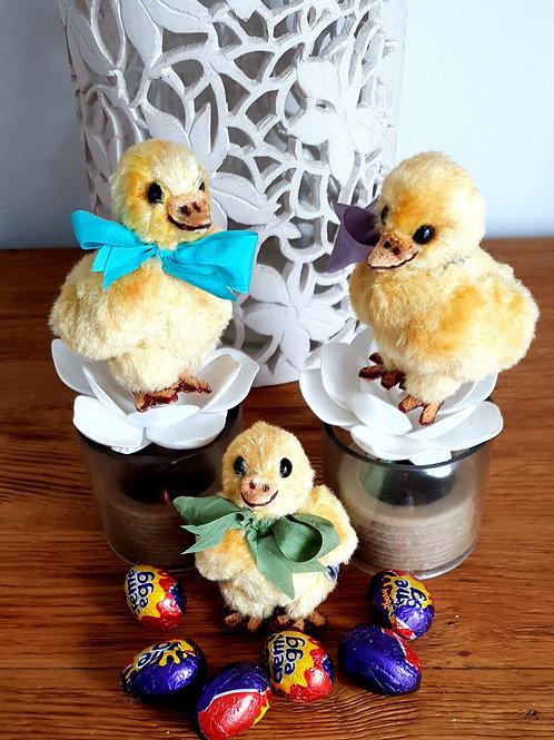 Easter / Spring Chicks '21