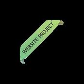 WEBSITEprojecttransparant100.png
