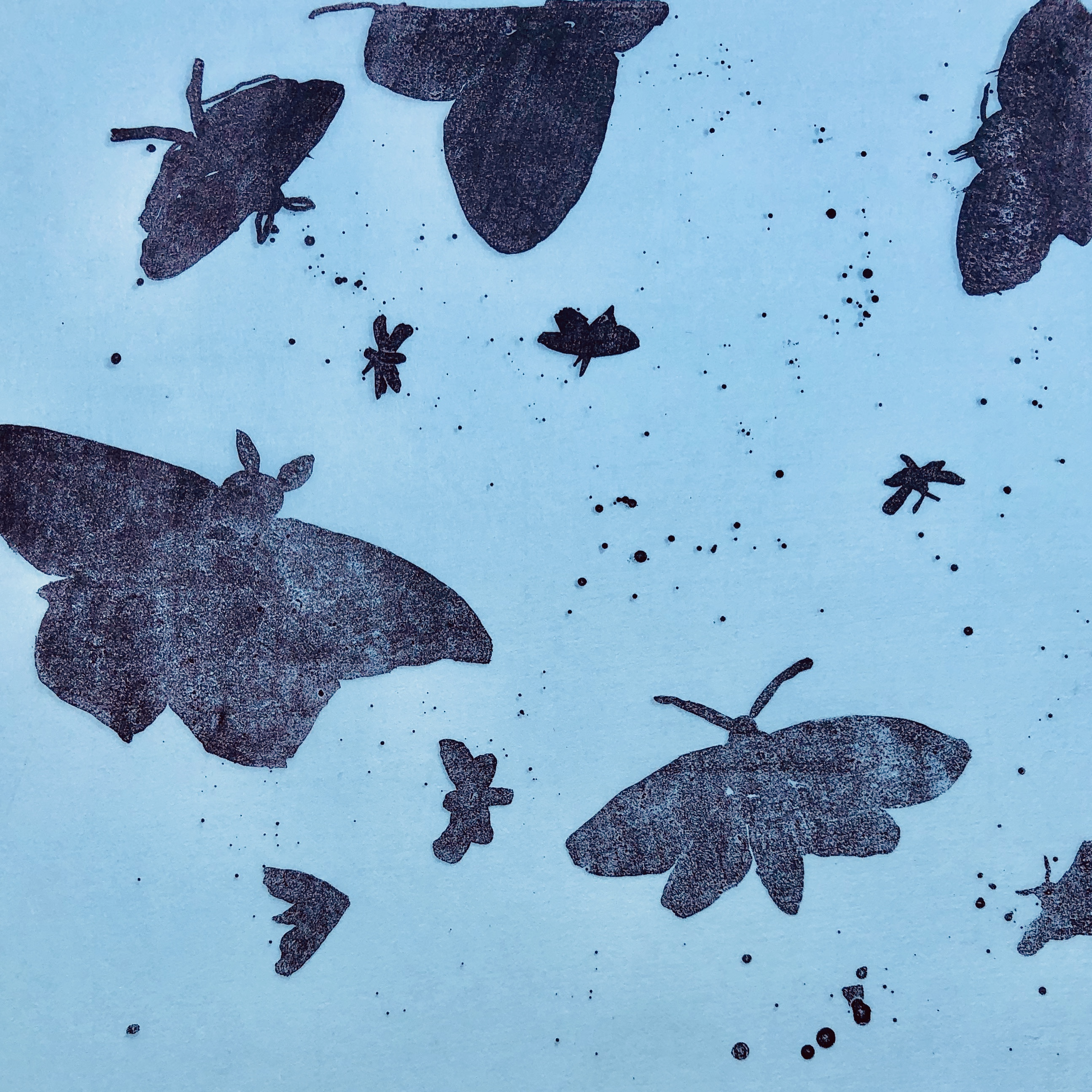 Monotype Moth Series 14