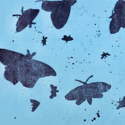 Monotype Moth Series 14