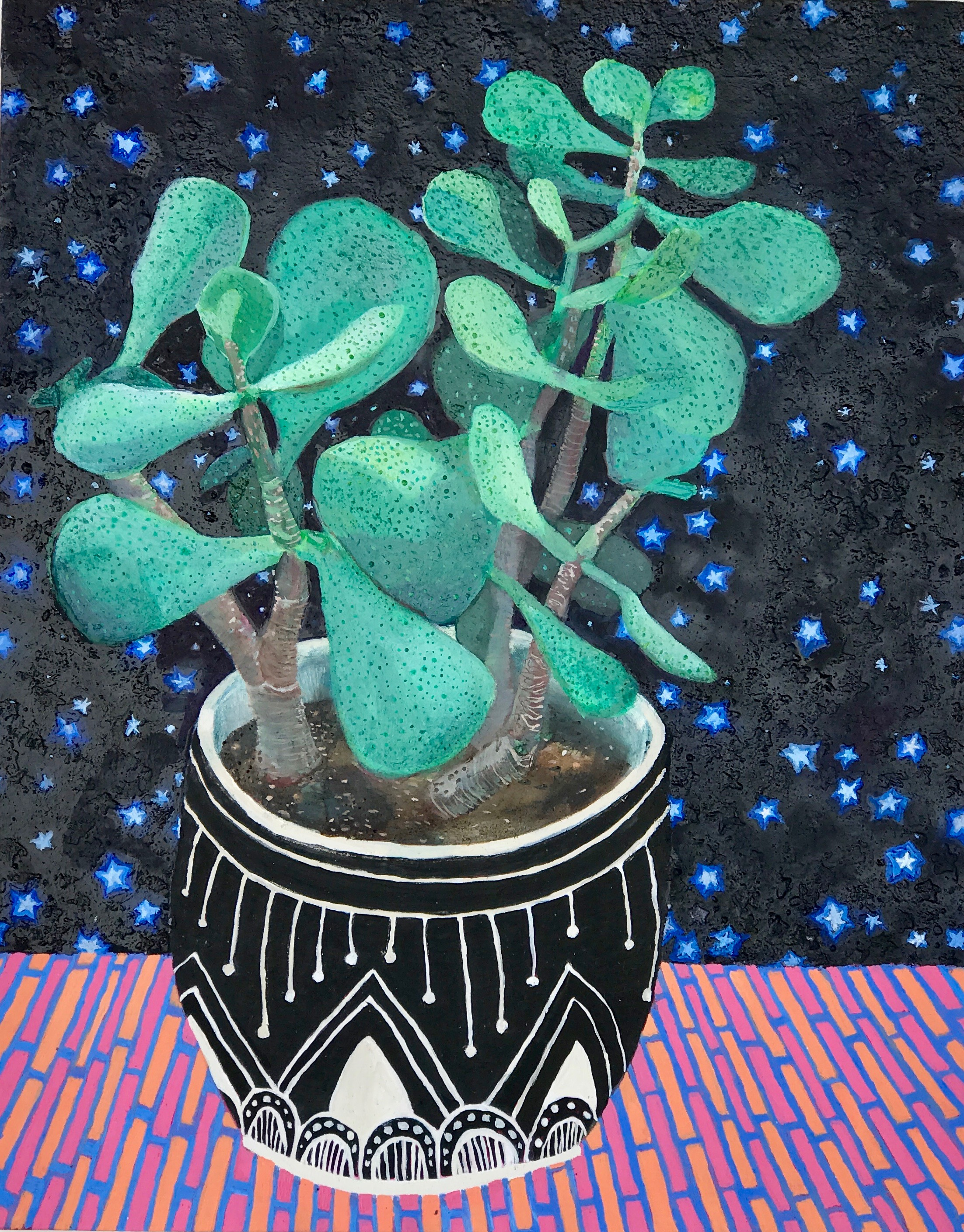 Wishing Upon the Money Plant