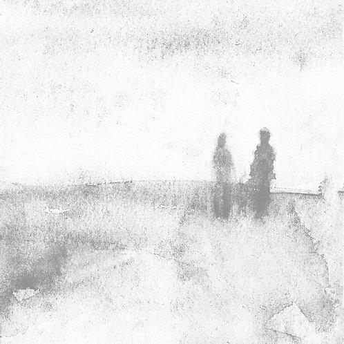 Birds of Passage - Dear & Unfamiliar LP
