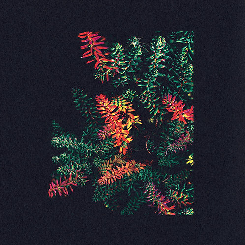 Dark Sky - Othona LP