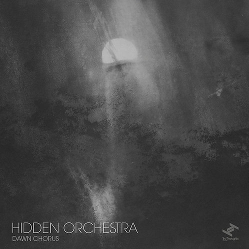 Hidden Orchestra - Dawn chorus clear vinyl