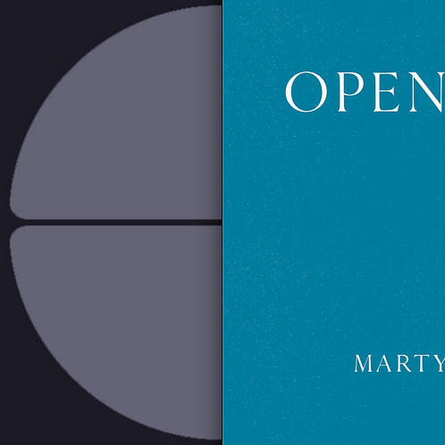 "Martyn Heyne Combo Pack - 1x Thesis 16 10"" + 1x Open Lines LP"