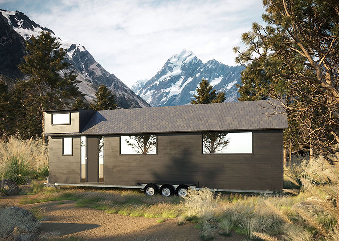 tiny home in mountain.jpg