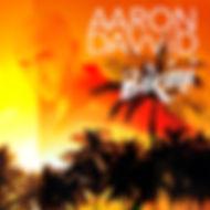 Bikini - Aaron David Album Cover