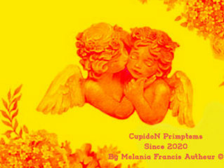 Cupidon Specialty Golden Blend  Collection by Melania Francis Autheur ©Since 2020