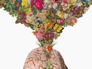 Caffè, Tè, Emozioni ed il Collegamento sensoriale Cerebrale!