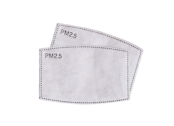 PM2.5 Filters for Reusable Face Mask. Pack of 25