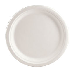 9 inch plate.jpg