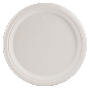 10 inch plate.jpg