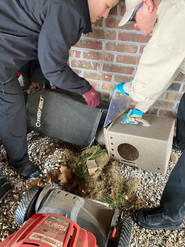 Officers Bush & Tedford work together to contain a trapped armadillo and release it back into the wild.