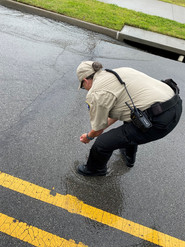 During the major flooding this past spring, Officer Tedford helped rescue a baby perch in the middle of the road. We were able to relocate it to a nearby pond.