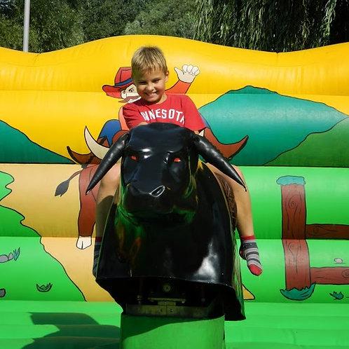 rodeó bika rendezvényre