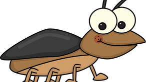 How to avoid bugs with six simple steps