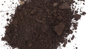 Top 4 common soil types