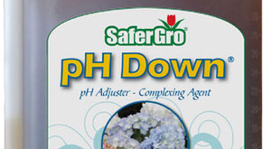 Understanding water pH in hydroponics