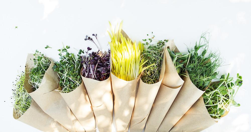 microgreens flavors