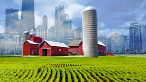 5 Ways Urban Farming Empowers Communities For Sustainability