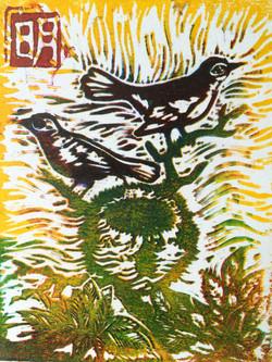 lino oiseau