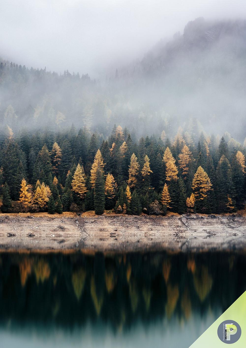 Poesie psicomagiche autunno - NOVEMBRE