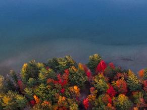 5 poesie psicomagiche d'autunno: Settembre