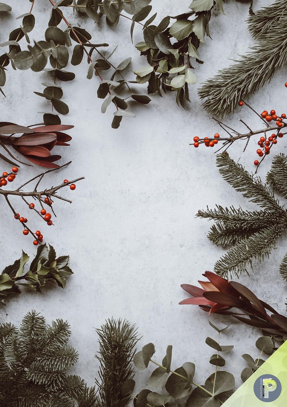 Poesie psicomagiche d'inverno - DICEMBRE