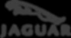 Jaguar_logo_transparent_png_edited.png