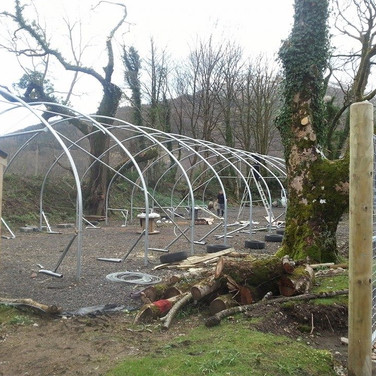 Commercial Polytunnel