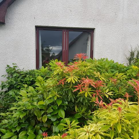 Garden Clearence & Decking Install