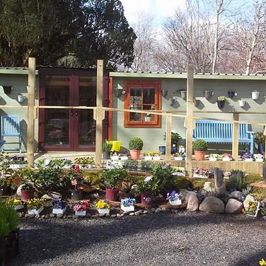 Log Cabin - Retail Shop